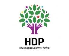 hdp (2)