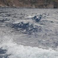 Yagmur bulutları toplanınca gölün rengi iyice karardı. Rüzgarla birlikte gölde başlayan hafif dalgalanma teknenin ardında bıraktığı dalgalarla birleşince…